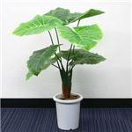 人工観葉植物 クワズイモ 85cm