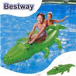 ワニ型 フロート/浮き輪 【縦約196cm×横約100cm×高さ約24cm】 ポリ塩化ビニル Crocodile Rider 〔プール ビーチ〕