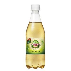 【まとめ買い】コカ・コーラ カナダドライ ジンジャーエール ペットボトル 500ml×24本(1ケース)