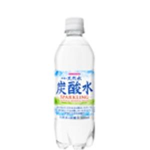 【まとめ買い】サンガリア 伊賀の天然水炭酸水 PET 500ml ×24本(1ケース)