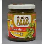 【ANDES FOOD SALSA CULANTRO】コリアンダーソース