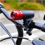 プリンストンテック 自転車LEDライト PUSH レッド [レッド]