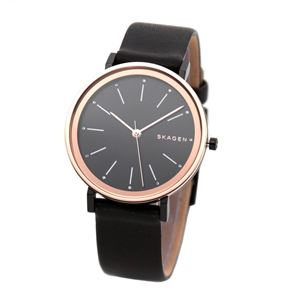 SKAGEN(スカーゲン) SKW2490 レディース 腕時計