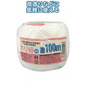ポリ紐(白)100m 【12個セット】 40-929