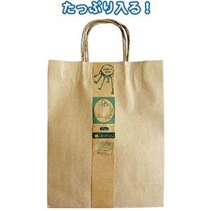 クラフト紙バッグL 2枚入(35×27×11cm) 【12個セット】 35-279