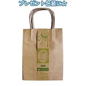クラフト紙バッグS 3枚入(23×18×8cm) 【12個セット】 35-281