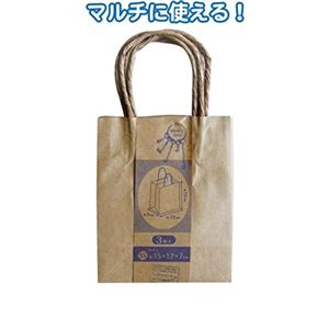 クラフト紙バッグSS 3枚入(15×12×7cm) 【12個セット】 35-282
