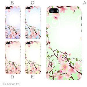 カラーE ハードケース iPhone5S/iPhone5 ケース/アイフォン5/ハードケース/ハード/ docomo/au/SoftBank 対応 カバー ジャケット スマホケース phone5_a03_573a_e