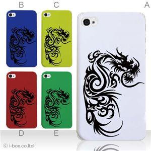 カラーE ハードケース iPhone5S/iPhone5 ケース/アイフォン5/ハードケース/ハード/ docomo/au/SoftBank 対応 カバー ジャケット スマホケース phone5_a05_500a_e