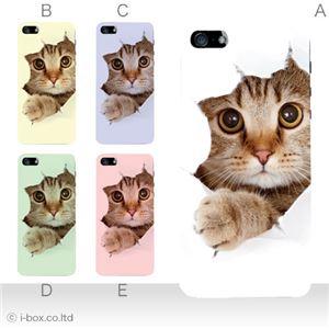 カラーE ハードケース iPhone5S/iPhone5 ケース/アイフォン5/ハードケース/ハード/ docomo/au/SoftBank 対応 カバー ジャケット スマホケース phone5_a07_061a_e