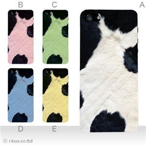 カラーE ハードケース iPhone5S/iPhone5 ケース/アイフォン5/ハードケース/ハード/ docomo/au/SoftBank 対応 カバー ジャケット スマホケース phone5_a08_049a_e