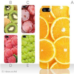 カラーE ハードケース iPhone5S/iPhone5 ケース/アイフォン5/ハードケース/ハード/ docomo/au/SoftBank 対応 カバー ジャケット スマホケース phone5_a18_512a_e