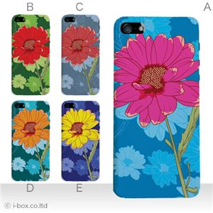 カラーE ハードケース iPhone5S/iPhone5 ケース/アイフォン5/ハードケース/ハード/ docomo/au/SoftBank 対応 カバー ジャケット スマホケース phone5_a19_572a_e