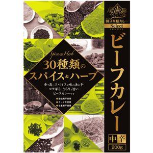 (まとめ買い)国立薬膳カレー ビーフカレー 30種類のスパイス&ハーブ 200g×10セット