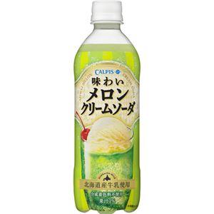 (まとめ買い)【ケース販売】カルピス 味わいメロンクリームソーダ 500ml×24本×2セット