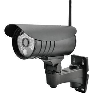 (まとめ買い)ELPA 増設用ワイヤレス防犯カメラ CMS-C71×2セット