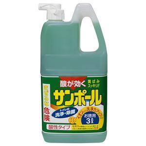 (まとめ) 大日本除蟲菊 サンポールK 業務用 3L 1本 【×4セット】