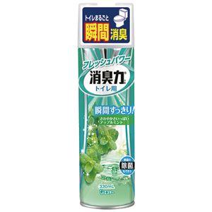 (まとめ) エステー トイレの消臭力スプレー アップルミント 330ml 1セット(3本) 【×4セット】