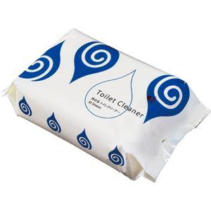 (まとめ) TANOSEE 流せるトイレクリーナー レギュラータイプ ミントの香り パック入 1パック(30枚) 【×20セット】