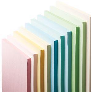 (まとめ)長門屋商店 Color Paper B5中厚口 若草 ナ-4206 1冊(100枚) 【×20セット】