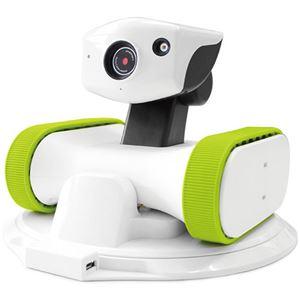 (まとめ)アボットライリー用交換シリコンベルトグリーン 1個【×10セット】