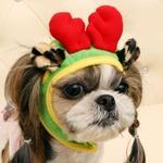 Its Dog(イッツドッグ) コスプレ帽子/ルドルフ【S】