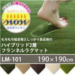 スミノエ 低反発高反発フランネルラグマット 190×190cm 正方形 ライムグリーン LM-101