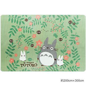 【となりのトトロ】 ラグマット/絨毯 【約200cm×300cm グリーン】 長方形 洗える 防音機能 ホットカーペット可 『おともだち』