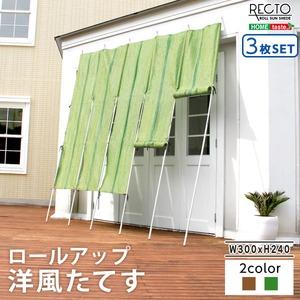 ロールアップ洋風たてす 幅300x高さ240cm 3SET【レクト-RECTO-】(たてす すだれ 300幅) グリーン