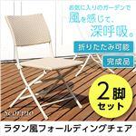 ラタン風フォールディングチェア 2脚セット【SCORPIO-スコルピオ-】(ガーデニング ラタン) ホワイト