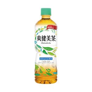 コカ・コーラ 爽健美茶600ml 1セット(24本入り箱×2箱)