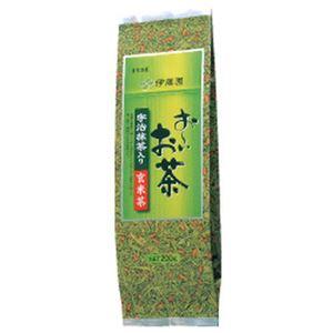 (まとめ)伊藤園 お〜いお茶 玄米茶【×10セット】