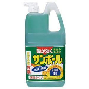 大日本除虫菊 サンポール 業務用 1本(3L) 1箱(3本)