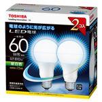 東芝 E-CORE LED電球 一般電球形 全配光タイプ 全光束810lm LDA8N-G/60W-2P 2個
