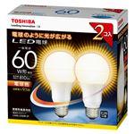 東芝 E-CORE LED電球 一般電球形 全配光タイプ 全光束810lm LDA9L-G/60W-2P 2個
