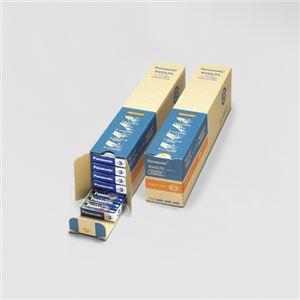 パナソニック EVOLTAアルカリ乾電池 単3形 100本入 LR6EJN/100S