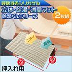 除湿くんシリーズ 立体・除湿・消臭マット 押入れ用 2枚組 FIN-484
