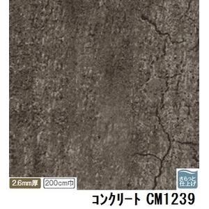 【訳あり・在庫処分】サンゲツ 店舗用クッションフロア コンクリート 品番CM-1239 サイズ 200cm巾×8m