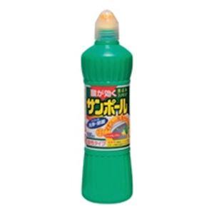 (まとめ買い)大日本除蟲菊 サンポール ノズル付 500ml 【×30セット】