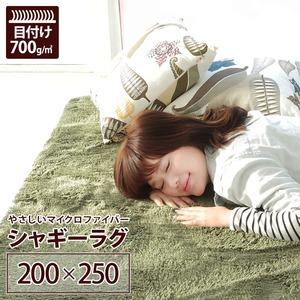 ラグマット 洗える 3畳 長方形(200×250cm) モスグリーン 【やさしいマイクロファイバーシャギーラグ】 〔北欧風 丸洗い カーペット〕