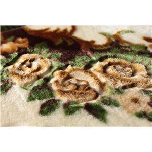 花柄 ラグマット/絨毯 【230cm×330cm ブラウン】 長方形 ホットカーペット 床暖房対応 『リオ3』