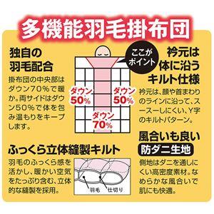 防ダニ生地使用特選羽毛掛布団 ブルー 【1: シングル】