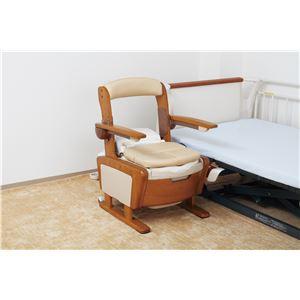 アロン化成 木製ポータブルトイレ 安寿 家具調トイレAR-SA1(シャワピタ) (1)ノーマルL 533-810