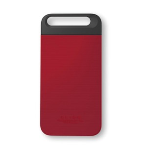 iPhone6  ケース カバー DESIGNSKIN ALION for iPhone 6  (IRON RED)
