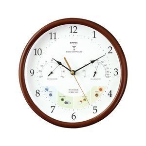 ウェザーパル電波時計 BW-873