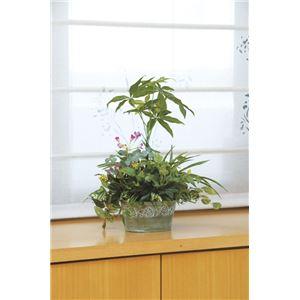 光の楽園【光触媒/人工観葉植物】寄せ植えパキラ