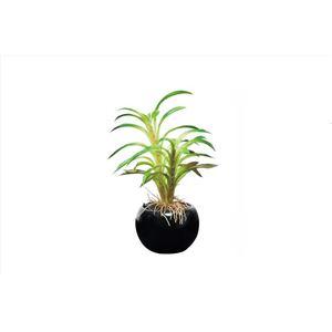 光の楽園【光触媒/人工観葉植物】カクタスインポット