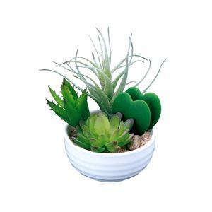 光の楽園【光触媒/人工観葉植物】寄せ植えラブリー