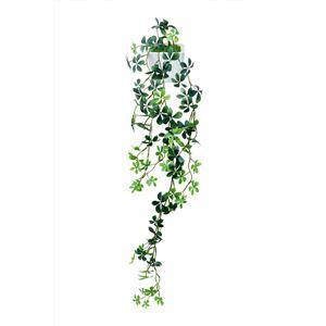 光の楽園【光触媒/人工観葉植物】壁掛けシュガーパイン