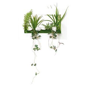 光の楽園【光触媒/人工観葉植物】3Dアートドラセナ
